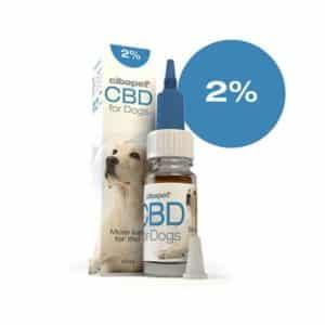 2% CBD Oil For Dogs