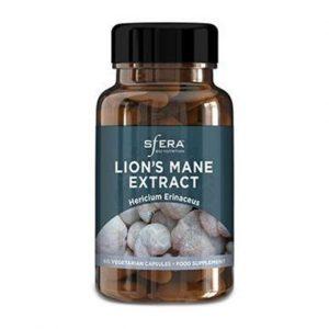 Lion's Mane Extract